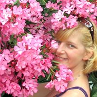 Рисунок профиля (oslik135@yandex.ru)